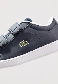 Lacoste - CARNABY EVO - Baskets basses - navy/white - 2