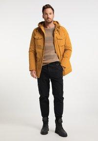 DreiMaster - Winter coat - senf - 1