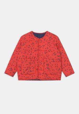 UNISEX - Winter jacket - red/ink blue