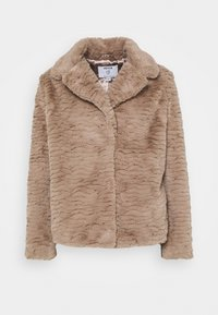 Dorothy Perkins Petite - WAVE COLLAR AND REVERE COAT - Winter jacket - mink - 0