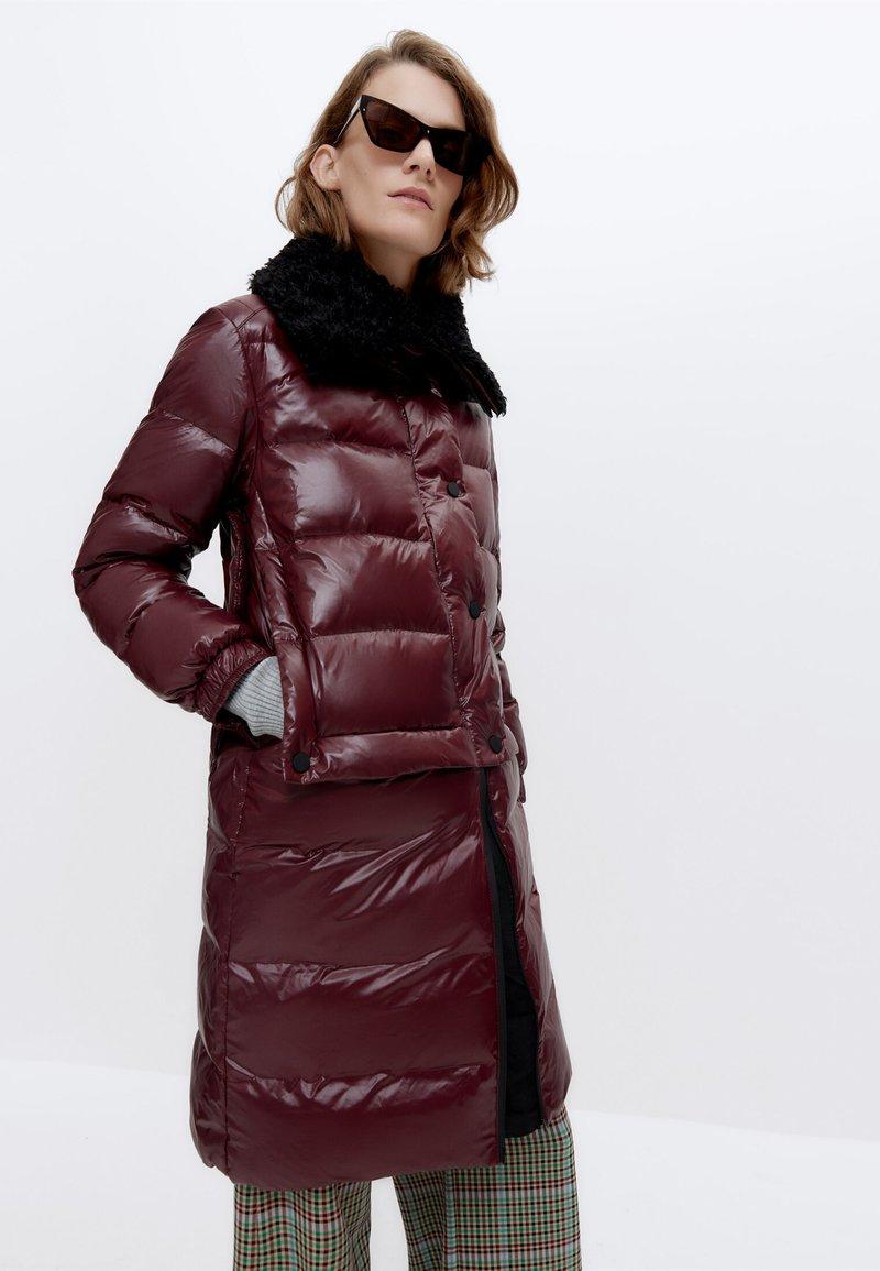 Uterqüe - Winter coat - bordeaux