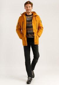 Finn Flare - MIT HOCHWERTIGER WATTIERUNG - Winter jacket - autumn - 1