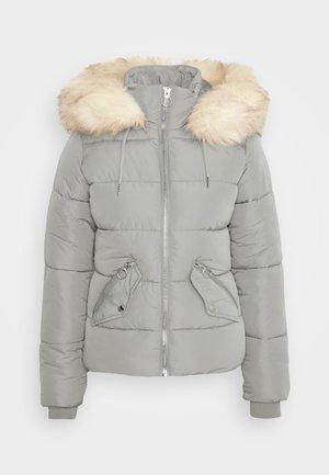 FREIDA - Winter jacket - grey