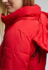 edc by Esprit - Winter coat - red - 5