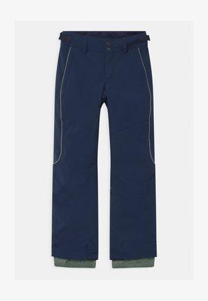 CHARM REGULAR - Zimní kalhoty - scale