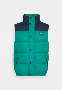 Tommy Jeans - CORP VEST - Waistcoat - midwest green/multi - 3