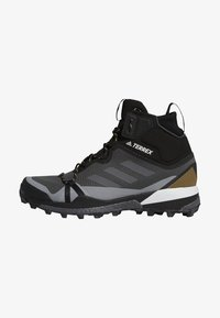 TERREX SKYCHASER GORE-TEX BOOST HIKING SHOES - Hiking shoes - grey