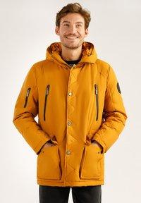 Finn Flare - MIT HOCHWERTIGER WATTIERUNG - Winter jacket - autumn - 0