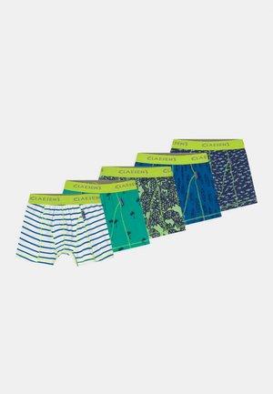 BOYS ZALANDO EXCLUSIVE 5 PACK - Boxerky - multi-coloured