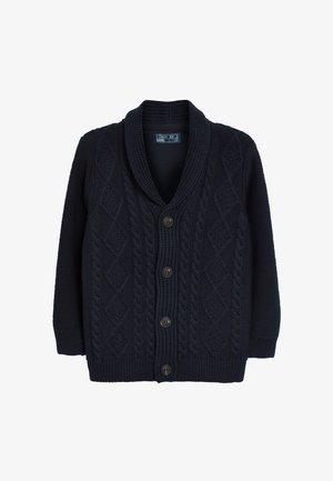 CABLE BUTTON - Cardigan - blue