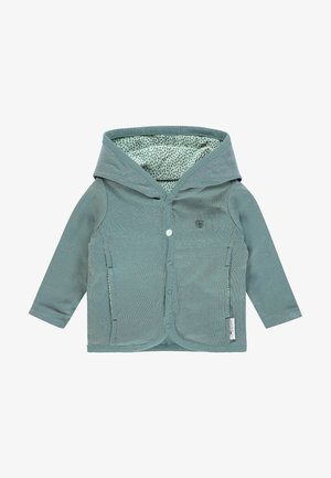 HAYE - Light jacket - grey mint