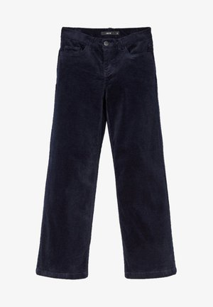 Trousers - sky captain