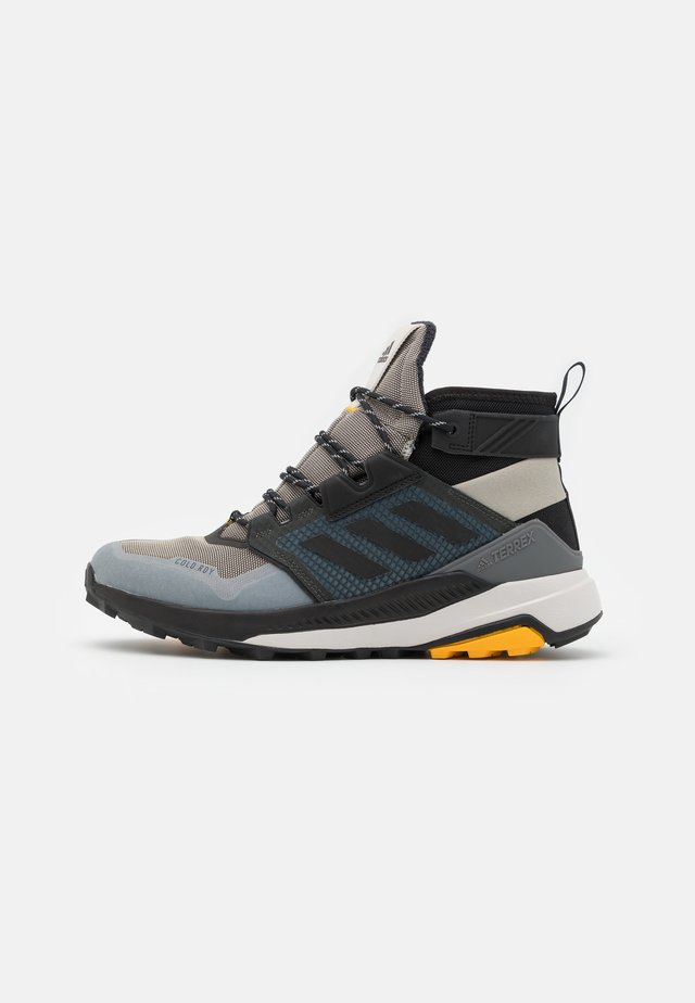 adidas TERREX TRAILMAKER MID COLD.RDY WANDERSCHUHE - Vaelluskengät - metallic grey/clear black/legend earth