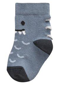 Next - 5 PACK DINOSAUR SOCKS - Socks - blue - 5