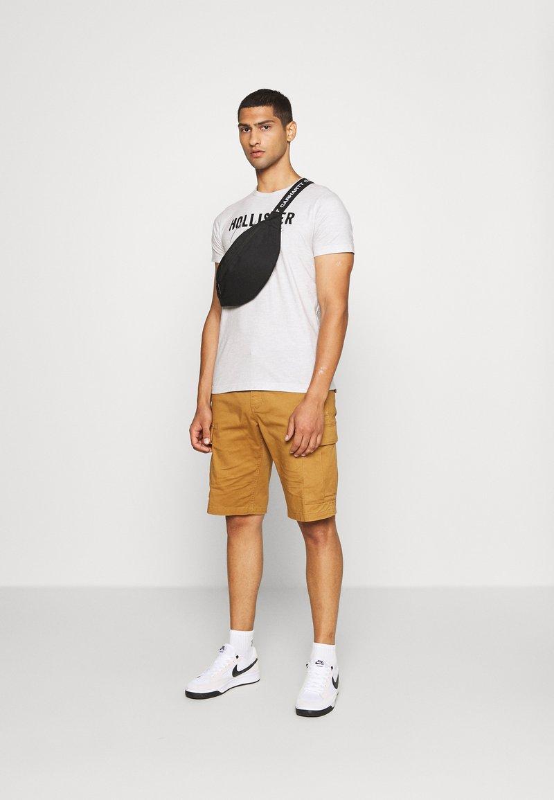 Hollister Co. - EX CORE TECH LOGO MULTI - T-shirt med print - grey/mint/cobalt