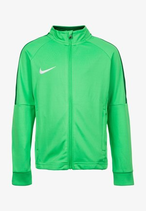 DRY ACADEMY 18 - Training jacket - green