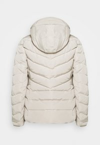 TOM TAILOR - SIGNATURE PUFFER JACKET - Winter jacket - dusty alabaster - 2