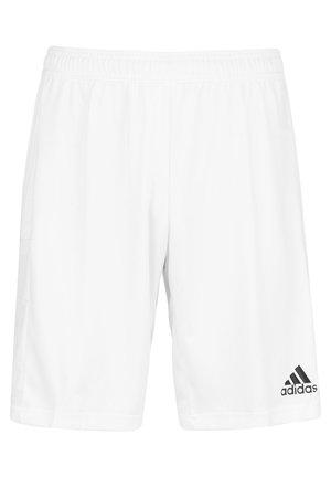 TEAM 19 TRAININGSSHORT HERREN - Sports shorts - white