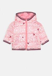 Tommy Hilfiger - BABY PRINTED PUFFER JACKET - Zimní bunda - pink - 0