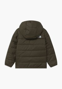 The North Face - REVERSIBLE PERRITO UNISEX - Vinterjakke - new taupe green - 1