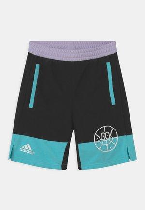 BASKETBALL UNISEX - Pantalón corto de deporte - black/pulse aqua/purple tint