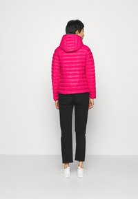 Tommy Hilfiger - ESSENTIAL - Doudoune - ruby jewel - 2