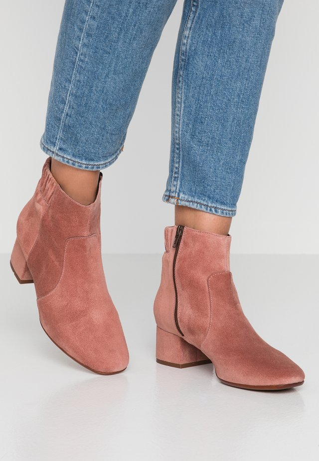 CARINA - Ankle boots - maquillaje