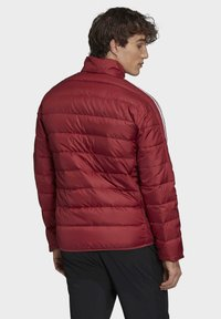 adidas Performance - Sports jacket - red - 1