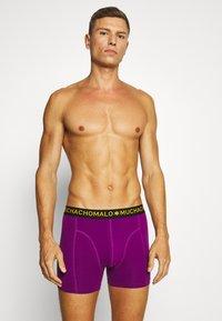 MUCHACHOMALO - THUGY 3 PACK - Pants - black/purple - 2