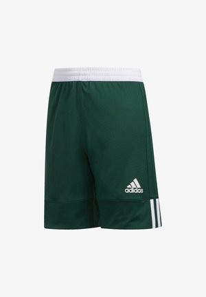 3G SPEED REVERSIBLE SHORTS - Korte broeken - green