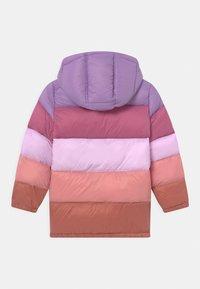 Cotton On - FRANKIE PUFFER - Winter coat - tulip splice - 1