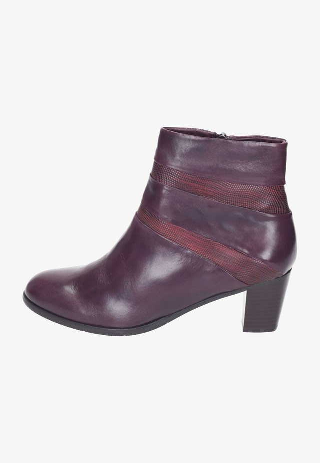 Classic ankle boots - vino/bordo
