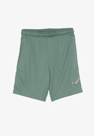 DRY SHORT - Sports shorts - bicoastal/faded spruce/iridescent