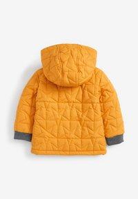 Next - Light jacket - ochre - 1