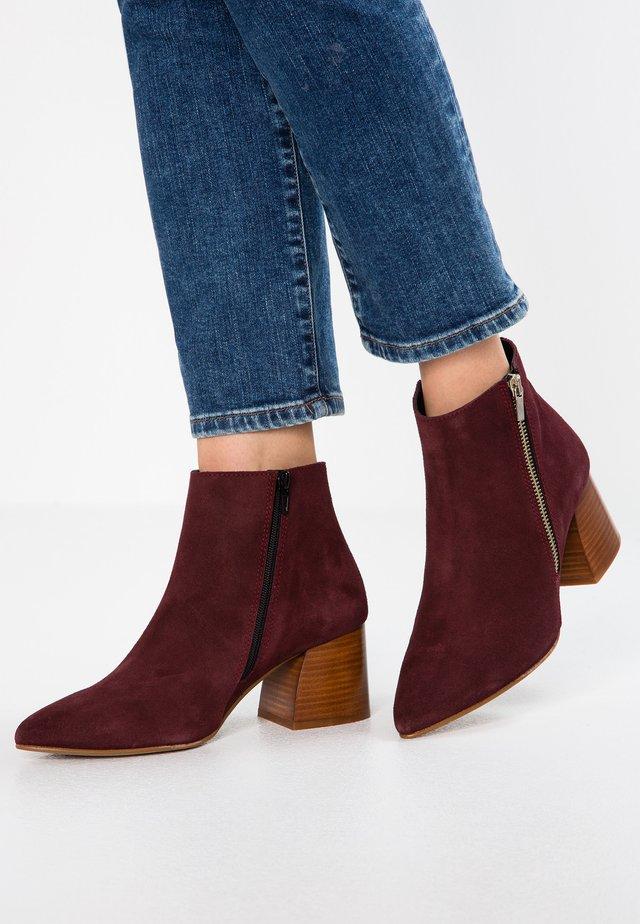 Ankle boot - bordeaux