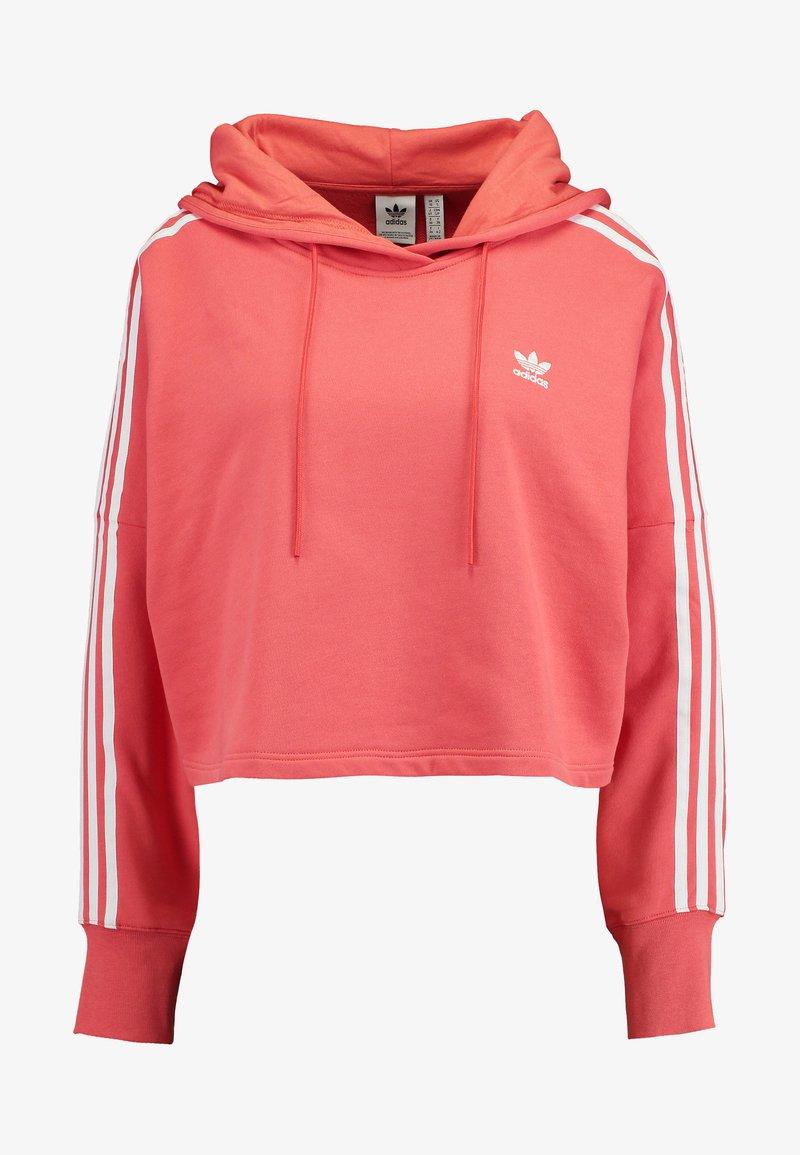 secondo polvere filosofo  adidas Originals ADICOLOR CROPPED HODDIE SWEAT - Felpa con cappuccio -  trace scarlet/white - Zalando