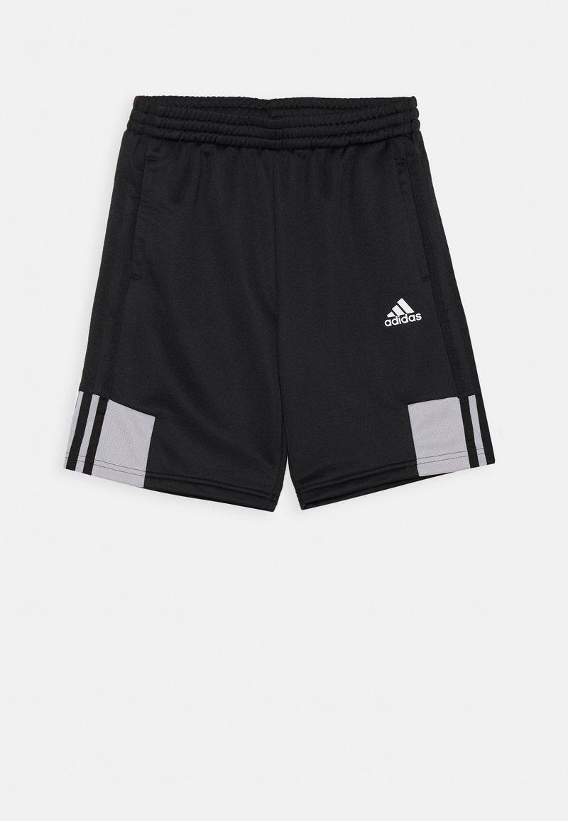 adidas Performance - UNISEX - Urheilushortsit - black/grey