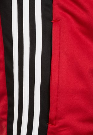 REGISTA 18 - Training jacket - red/black