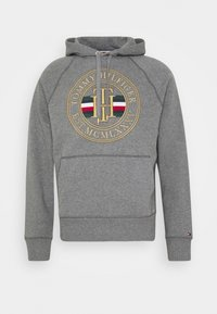 ICON - Hoodie - grey