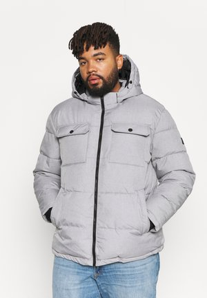 JJRONALD PUFFER - Winter jacket - light grey melange