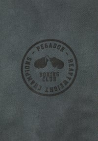 Pegador - MIKE HOODIE UNISEX USED LOOK - Sweat à capuche - vintage grey - 3