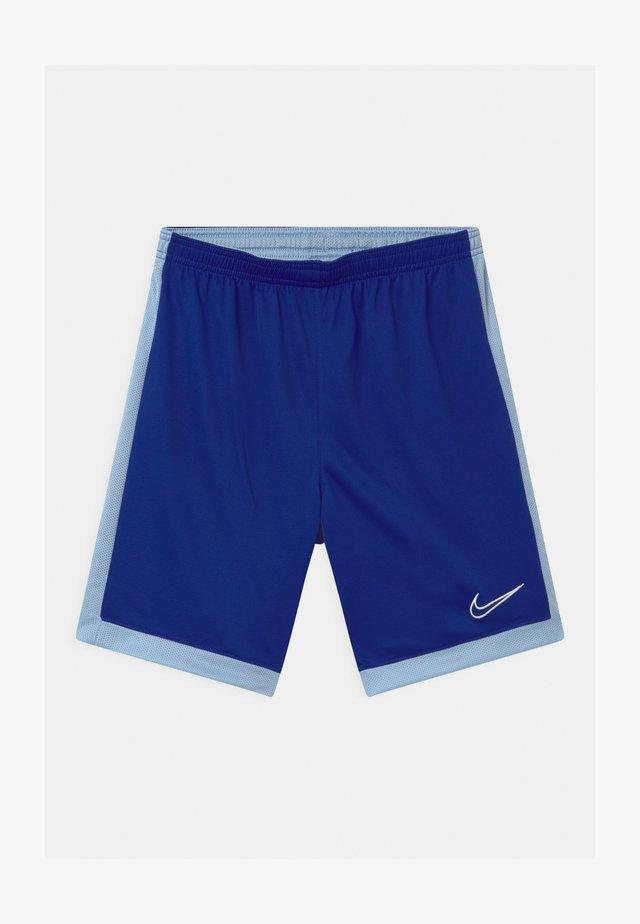 DRY ACADEMY  - Sportovní kraťasy - deep royal blue/armory blue/white