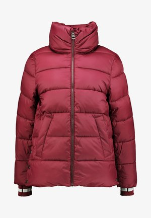 THINSULATE - Winter jacket - bordeaux red