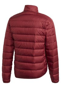 adidas Performance - Sports jacket - red - 10