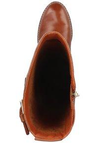 Pikolinos - Cowboy/Biker boots - cuero - 1
