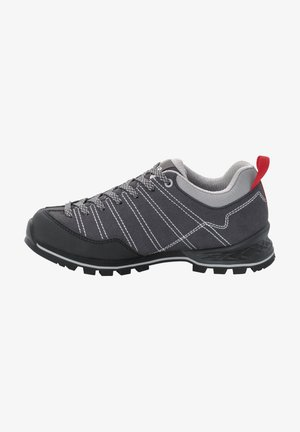 Hiking shoes - phantom/light grey