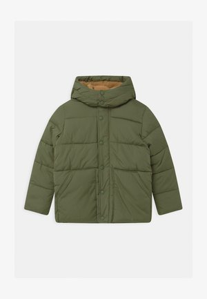 BOY WARMEST - Winter jacket - desert cactus