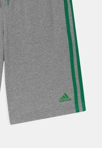 adidas Performance - Pantalón corto de deporte - grey/green - 2