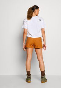 Patagonia - STAND UP - Urheilushortsit - umber brown - 2