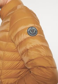 Teddy Smith - BLIGHT - Light jacket - orange topaze - 5